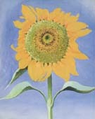 Georgia O'Keeffe Sunflower, New Mexico