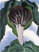 Georgia O'Keeffe Jack in the Pulpit 3