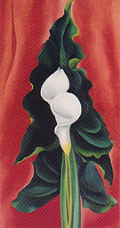 Georgia O'Keeffe Calla Lilies on Red 1928