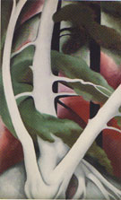Georgia O'Keeffe Birch and Pine Tree No 2 1925
