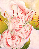 Georgia O'Keeffe Pink Spotted Lily II 1936