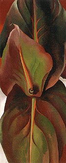 Georgia O'Keeffe Canna Leaves 1925