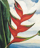 Georgia O'Keeffe Crabs Claw Ginger Hawaii 1939