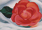 Georgia O'Keeffe Red Camellia 1935