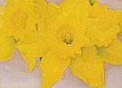 Georgia O'Keeffe Jonquils 1 1936