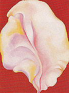Georgia O'Keeffe Shell On Red 1931