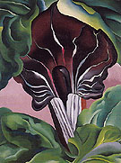 Georgia O'Keeffe Jack In Pulpit No 2 1930