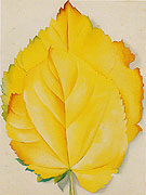 Georgia O'Keeffe Two Yellow Leaves 1928