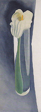Calla Lily In Tall Glass No 2 426 1923 - Georgia O'Keeffe