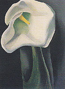 Calla Lily With Black 1923 - Georgia O'Keeffe