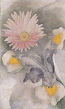Georgia O'Keeffe Pink Daisy With Iris 1927