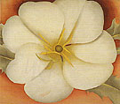 Georgia O'Keeffe White Flower On Red Earth 1 1943