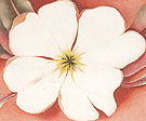 Georgia O'Keeffe White Flower On Red Earth 2 1943
