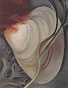 Georgia O'Keeffe Shell No 2 1928