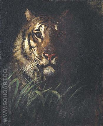 Tigers Head c1874 - Abbott Henderson Thayer reproduction oil painting