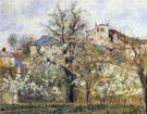 Orchard with Flowering Trees Spring Pontoise 1877 - Camille Pissarro
