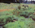 Dennis Miller Bunker The Brook at Medfield 1889