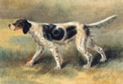 Edmund Henry Osthaus An English Setter