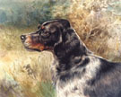 The English Setter - Edmund Henry Osthaus