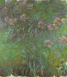 Agapanthus 1916 - Claude Monet reproduction oil painting