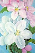 Apple Blossoms 1930 - Georgia O'Keeffe