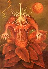 Flower of Life 1943 - Frida Kahlo