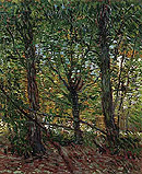 Trees and Undergrowth - Vincent van Gogh reproduction oil painting
