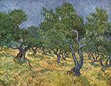The Olive Orchard 1889 - Vincent van Gogh reproduction oil painting