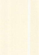 Ninth Station 1964 - Barnett Newman