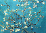 Branches with Almond Blossom 1890 - Vincent van Gogh reproduction oil painting