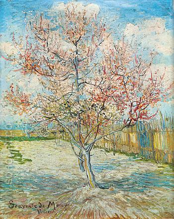 Peach Tree in Bloom 1888 - Vincent van Gogh reproduction oil painting