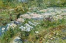The Water Garden 1909 - Childe Hassam reproduction oil painting