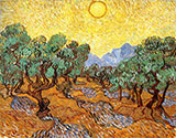 Olive Trees with Yellow Sky and Sun 1889 - Vincent van Gogh reproduction oil painting