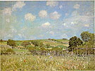 Meadow 1875 - Alfred Sisley reproduction oil painting