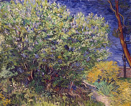 Lilac Bush 1890 - Vincent van Gogh reproduction oil painting