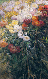 Clump of Chrysanthemums Garden at Petit Gennevilliers 1893 - Gustave Caillebotte reproduction oil painting