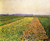 The Gennevilliers Plain Yellow Fields 1884 - Gustave Caillebotte reproduction oil painting
