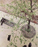 Boulevard Seen from Above c1880 - Gustave Caillebotte reproduction oil painting