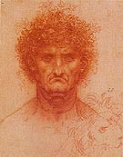 Head of Man and of a Lion - Leonardo da Vinci
