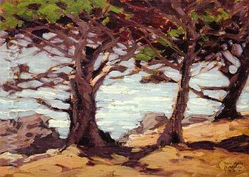 Carmel Cypress 1934 - Sam Hyde Harris reproduction oil painting