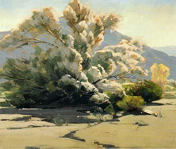 Desert Lavender - Sam Hyde Harris reproduction oil painting