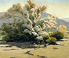 Desert Lavender - Sam Hyde Harris