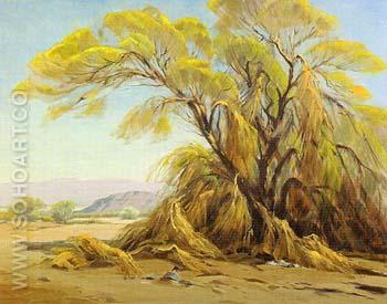 Palo Verde Bloom - Sam Hyde Harris reproduction oil painting