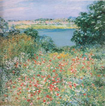 Poppy Garden 1905 - Willard Leroy Metcalfe reproduction oil painting
