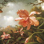 HEADE, Martin Johnson