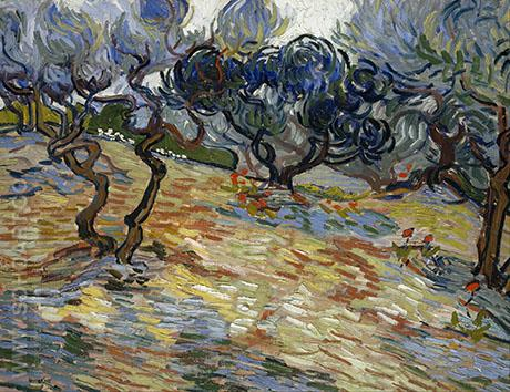 Olive Trees 1890 - Vincent van Gogh reproduction oil painting