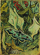 Emperor Moth May 1889 - Vincent van Gogh reproduction oil painting
