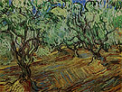 Olive Grove 1889 - Vincent van Gogh reproduction oil painting