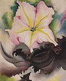 Petunia And Coleus 1924 - Georgia O'Keeffe