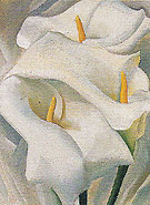 Calla Lilies 1924 - Georgia O'Keeffe
